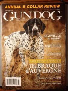 lucky GUN OG COVER